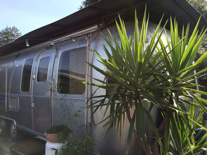 Sweet Airstream Dreams, Walkable to Downtown!