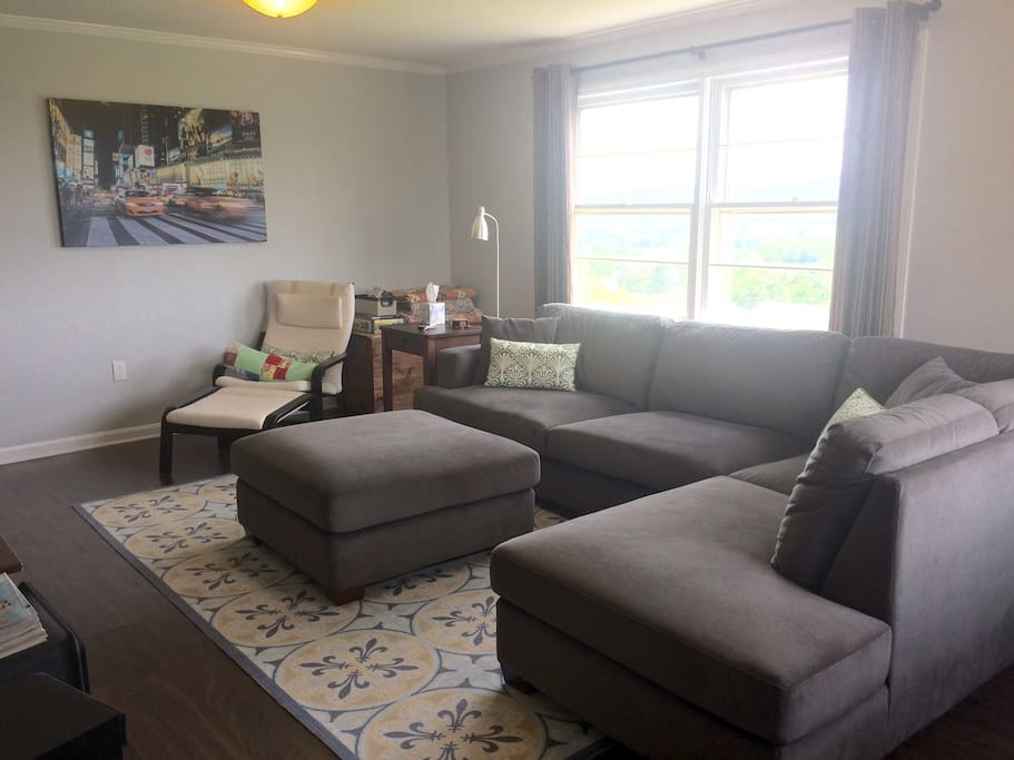 "Living room has a 55"" television with satellite programming, including premium movie channels. LR also has a work area with two windows looking over the city. Perfect space for family movie time :)."