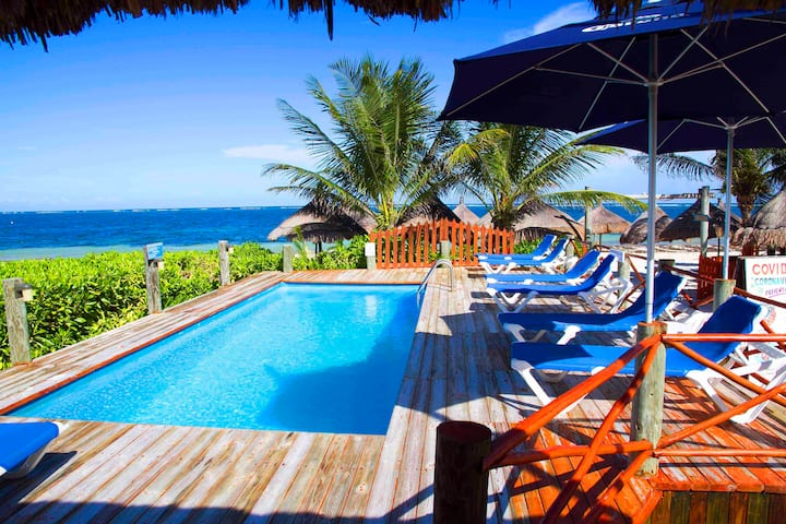 Beachfront Cabines at The Diving Lodge Downtown