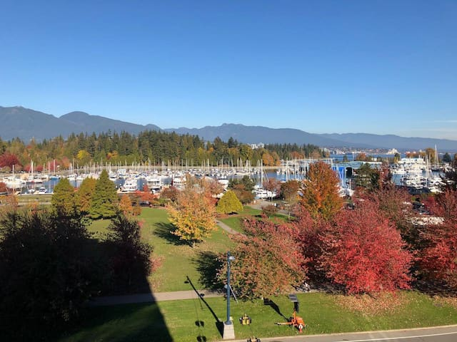 Stanley Park Panoramic Views of Seas and Mountains
