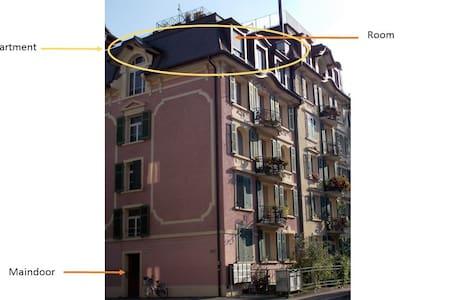 Charming habitation - Lucerne - Lägenhet