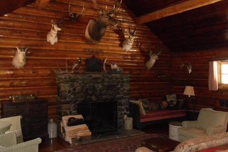 A Great Log Cabin