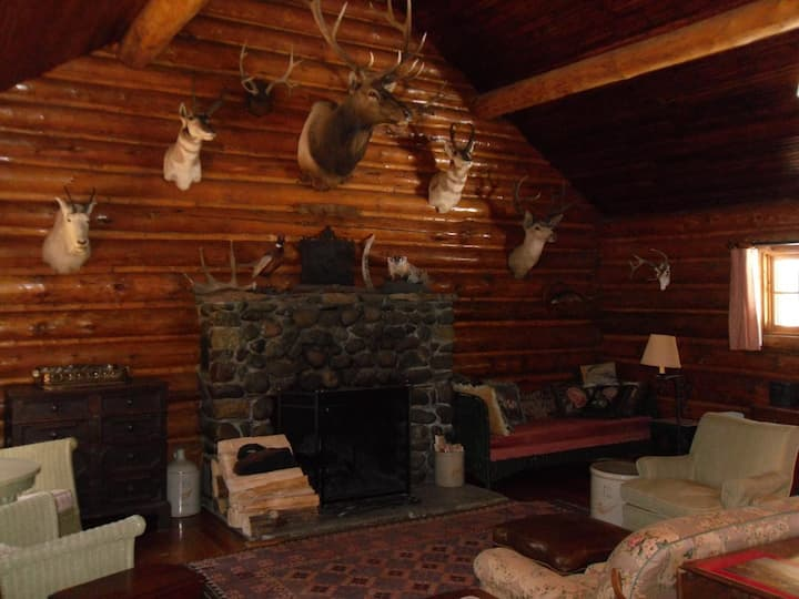 A Great Log Cabin