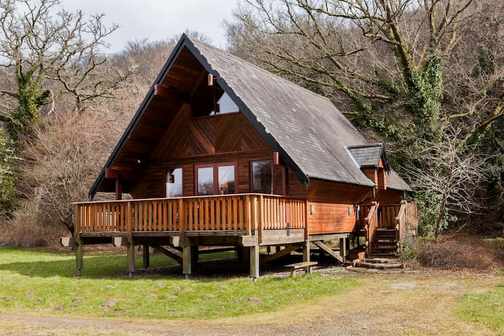 Mole End; a wooden lodge in Devon's national park - Drewsteignton