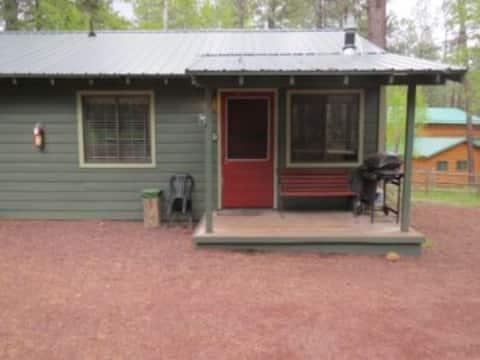 Aspen Cabin # 2