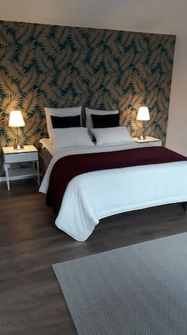 Chambre spacieuse ( 20m2 )