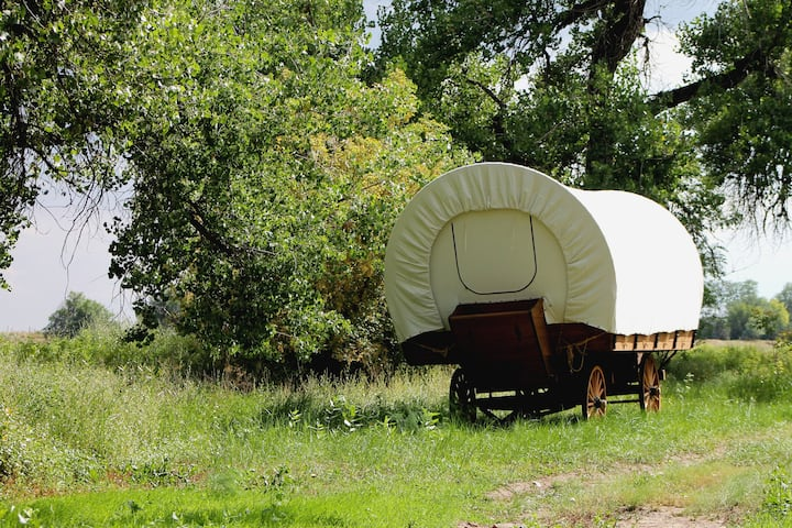Luxurious & Spacious Covered Wagon