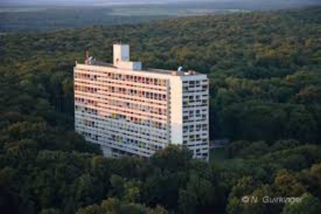 """En prolongeant votre promenade à travers la forêt, vous parviendrez à la """"Cité Radieuse"""" de Le Corbusier"""