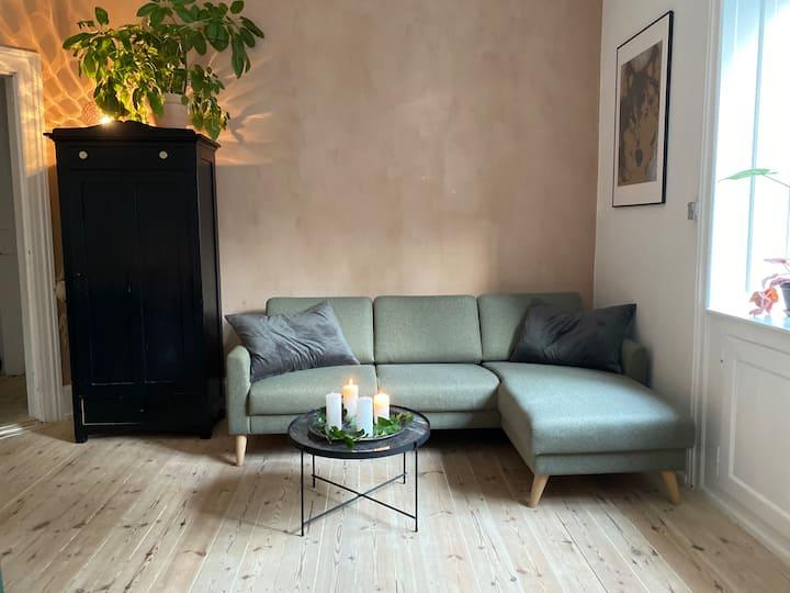 Hyggelig lejlighed på Nørrebro.