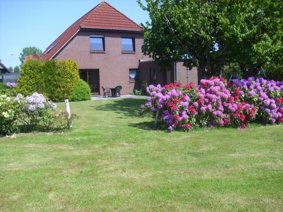 Der große Garten mit der blühenden Rhododendronhecke