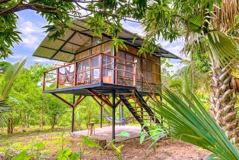 La Palmera: a treehouse nestled in an Organic farm