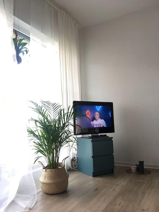 Fernseher mit HDMI Kabel im Zimmer