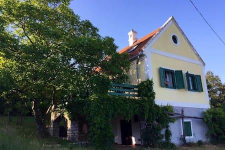 Romantisches Weinberghaus am Plattensee