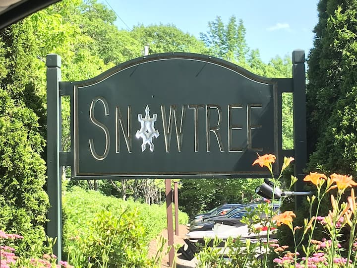 SnowTree Retreat! Views of Mt Snow are amazing!
