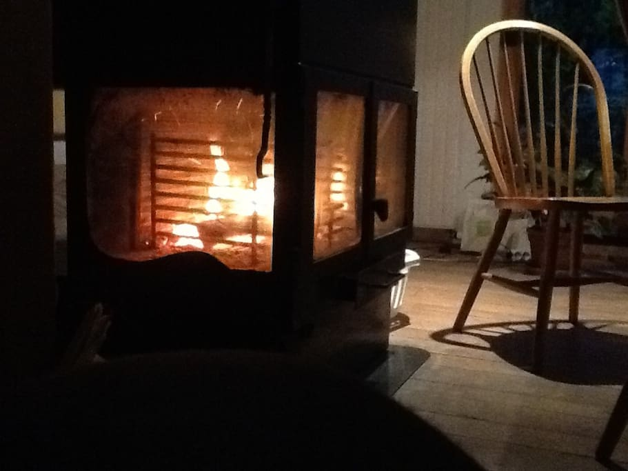 Wood burning fire in the winter.