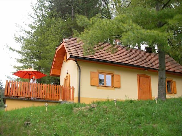 Ferienhaus in Turski Vrh - Turški Vrh - Casa