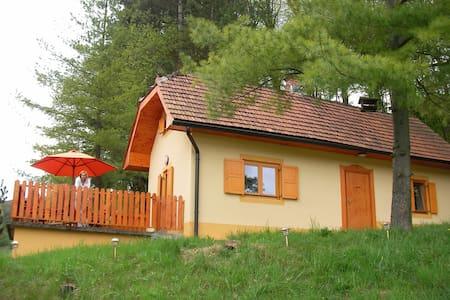 Ferienhaus in Turski Vrh - Turški Vrh - Rumah