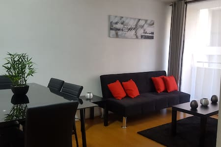 flat 2 bedrooms and 2 bathrooms santiago downtown - Santiago