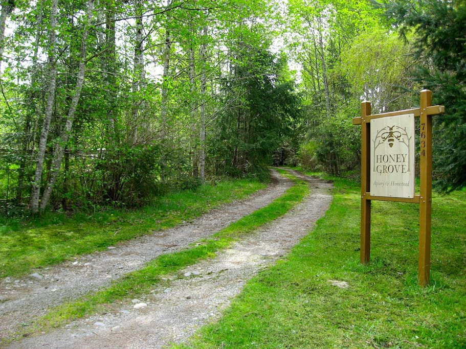 Welcome to Honey Grove! Follow this woodland path to find your tranquil sanctuary