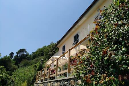 Casa Falena -  CITRA 010013-LT-0012