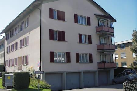 Ganzes Apartment Rapperswil, 60m2 bis 4 Personen