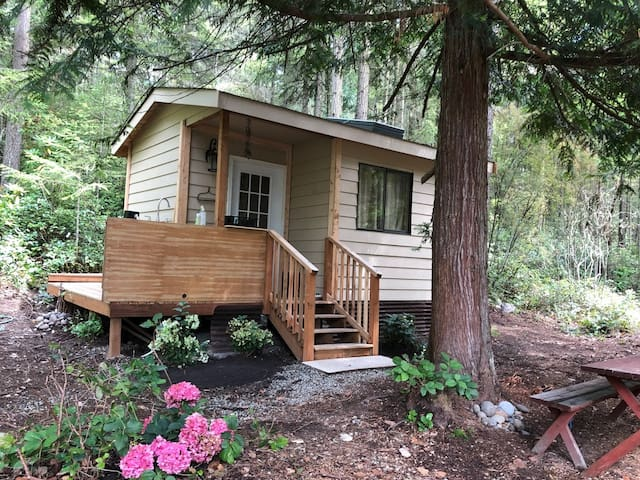 Cedar Haven Cabin, 10 minutes from Downtown PT