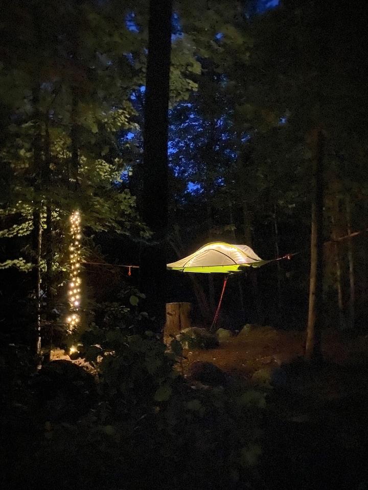 Sleeping in the Trees on Magic Island