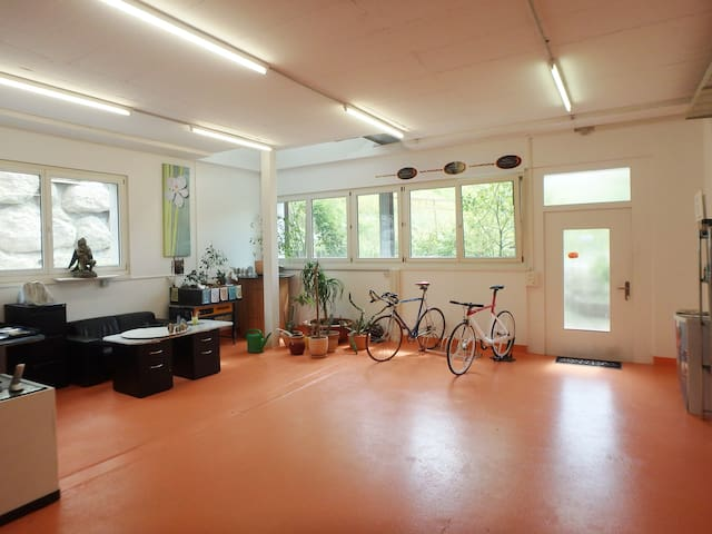 Very quiet Office-Flat 150m2 (13km from Luzern)
