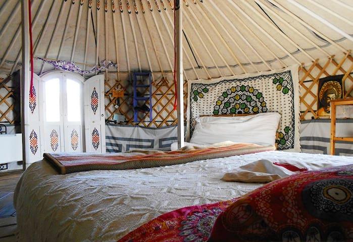 Yurta in Valchiusella