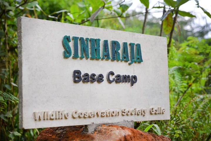 Sinharaja Base Camp