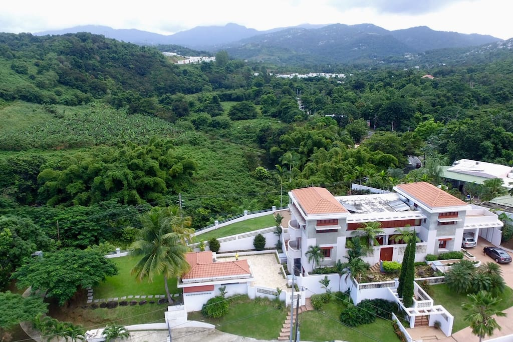 Bird's eye view to the mountain of El Yunque