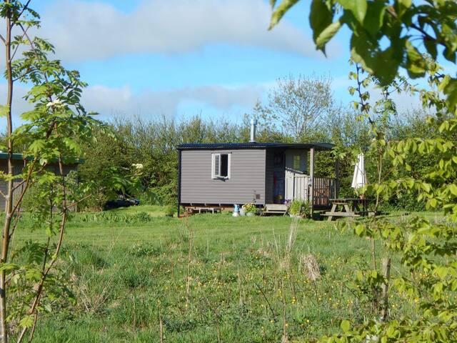 Frizparc Shepherd's Hut