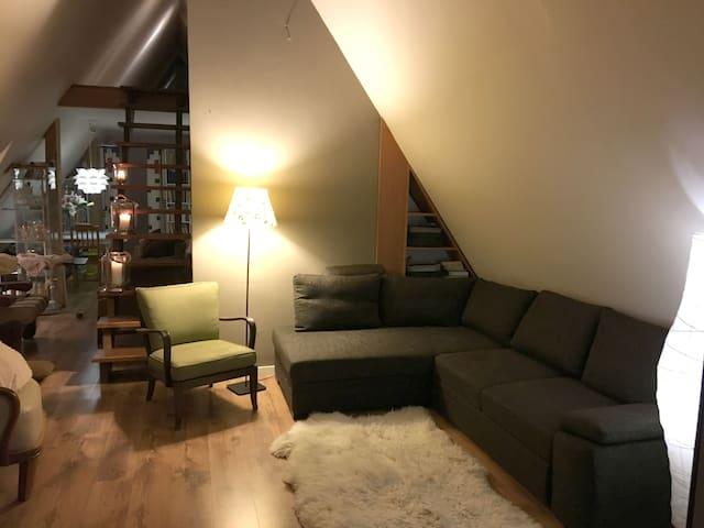 Apartament na poddaszu - Nowy Targ