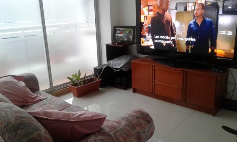 Sala television