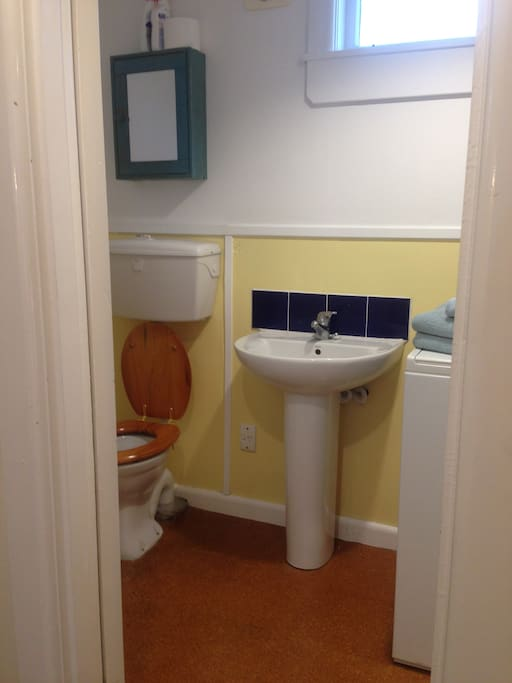 Bathroom includes a shower and a washing machine as well as a heat