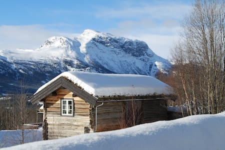 Amazing wiew from a nice cabin. - Hemsedal - 통나무집