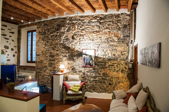 """The House of Stones"" an ancient convent in Como - Côme - Appartement"