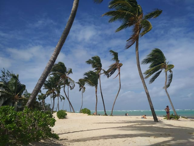 The Chill Out Spot @ Bavaro beach - by Alfred Spin
