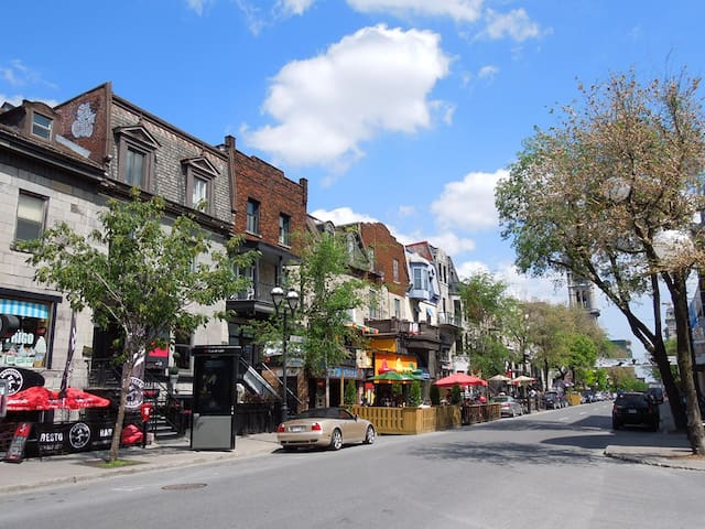 The best restaurants and terraces of St. Denis.  1-minute walk, just around the corner.