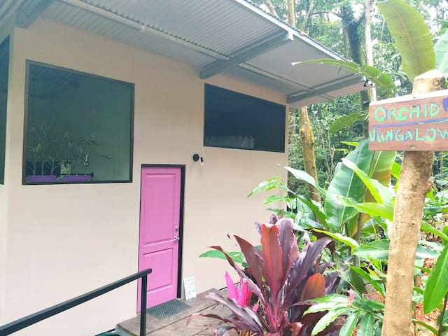 Jungle Bungalow for Couples-15 min to the beach