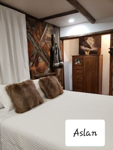 """This room was inspired by a famous C.S. Lewis novel.  This guest room features rustic winter decor complete with an old 1900's chifferobe and unique """"Aslan"""" inspired antique treasures."""