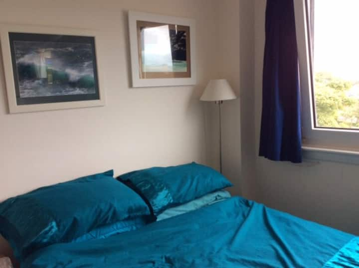 Room in centre of exeter
