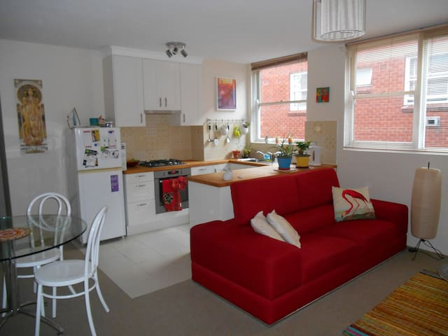 Sunny apartment, 10 mins from city! - Ashfield - Wohnung