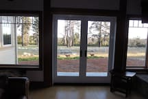 View from the living room of our daily visits from our deer!