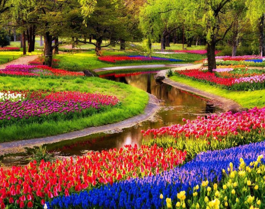 KEUKENHOF 2017 Spring in the air! Easy to get it! Master Apartment Amsterdam