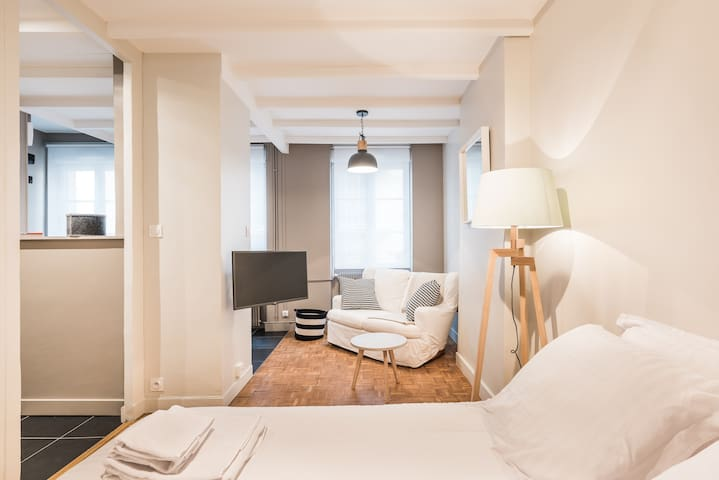 GREAT AND BRIGHT STUDIO - LA CONFLUENCE - Lyon - Apartemen
