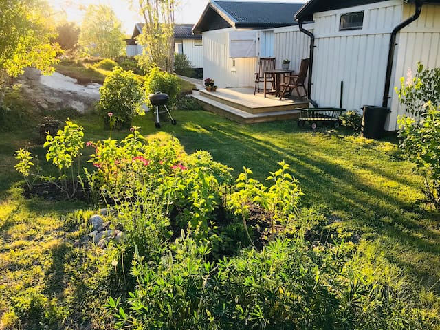 Private backyard with evening sun.