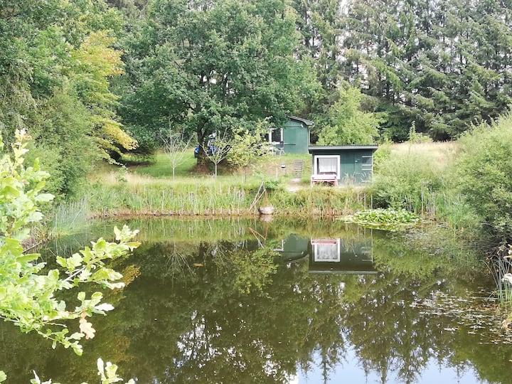 Ferienhütte mitten im Wald, Nordfriesland