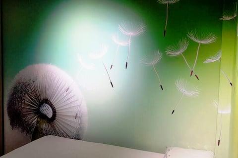 Microappartamento in centro di Carpi B&B Lula