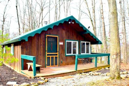 Lumberjack Cabin: WiFi+Near Bald Eagle State Park